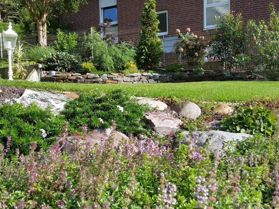 Staudenbeet mit Wildblumen, Gartenbau Siegburg, Rösrath, Lohmar